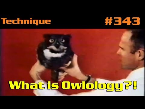 What Is Owlology?!
