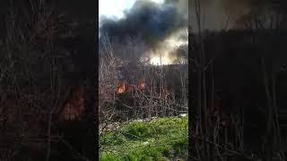 Пожар возле парка Победы. 08.04.2018