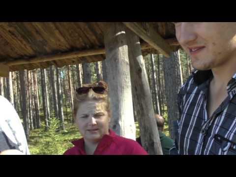 Lühifilm noortevahetusest Forest Tales: Tule metsa