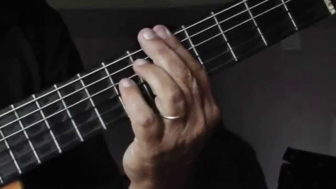 Accords De Guitare Jardin D Hiver Henri Salvador Youtube