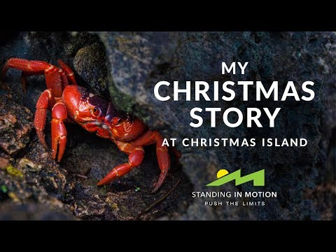 My Christmas Story - at Christmas Island