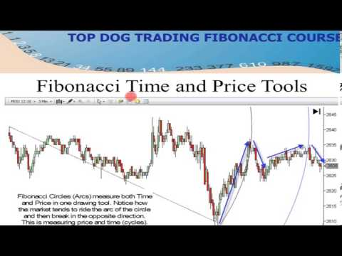 Advanced Fibonacci Trading Strategies by  Barry Burns | Real Traders Webinar