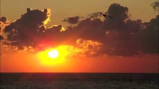 Rodrigo y Gabriela - Tamacun (Monkey Safari Remix)
