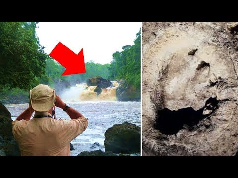 The Mokele Mbembe | A Real Life Living Dinosaur Living In The Congo?