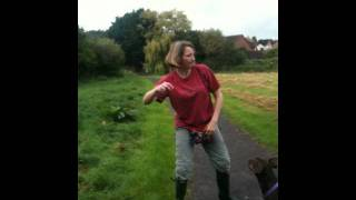 Leave It Demonstrated By Apbc Member Helen Taylor And Her Dog, Tia