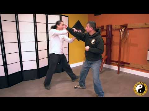Shaolin 5 Animals   Introduction To Shaolin Dragon Style   Kung Fu Training