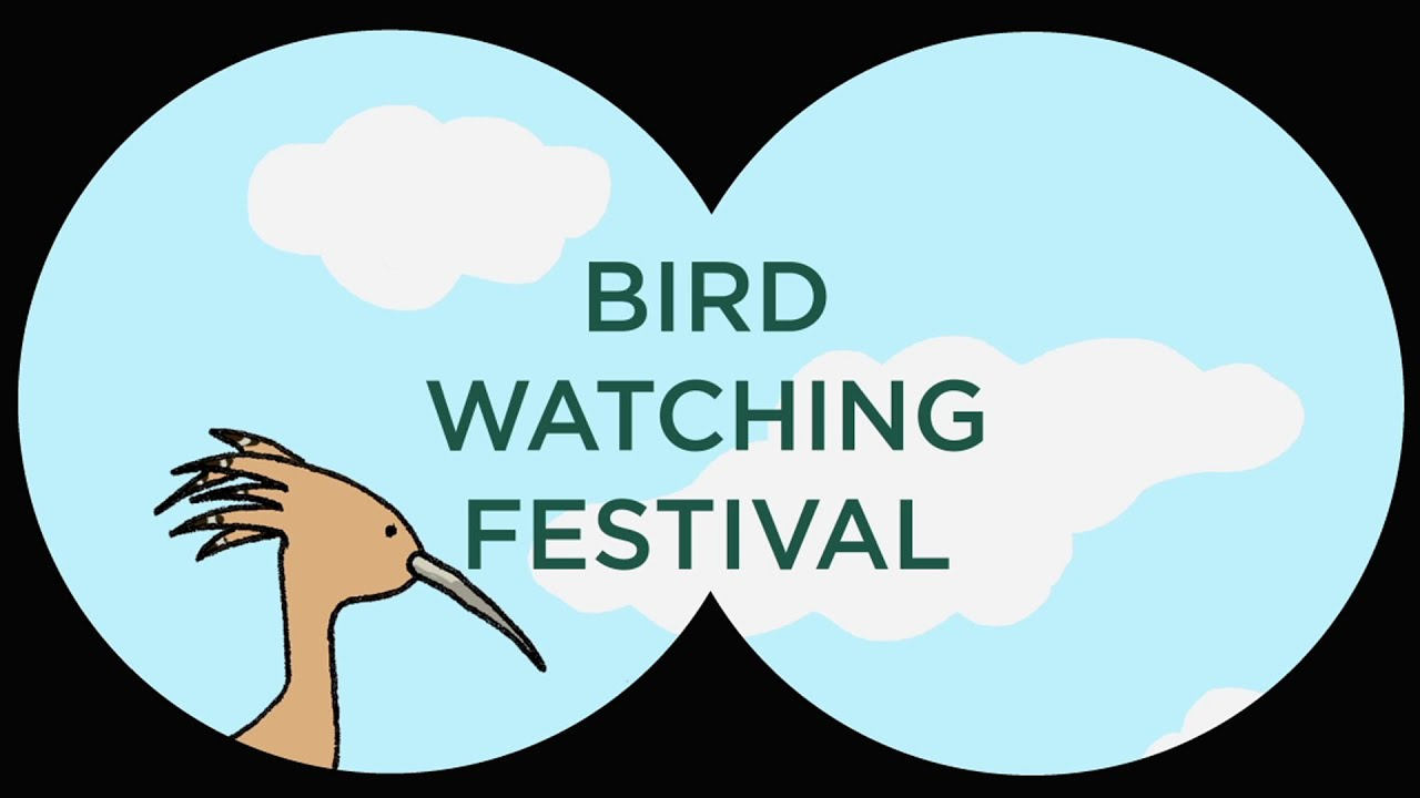 Ellie Boland, Bird Watching Festival