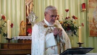 Trump besucht den Pontifex – Missmutiges Gesicht des Papstes