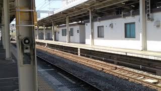 臨時列車「徳川×今川歴史めぐり号」静岡駅到着‼️
