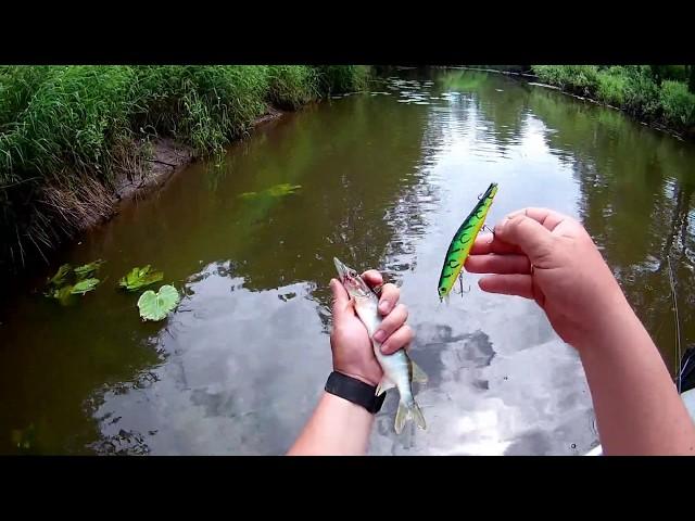Ловля щуки на малой реке китайскими воблерами июнь 2020