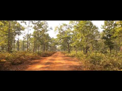 Forest of Jhargram , West Bengal