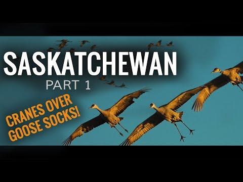 Crane Hunt Over Goose Windsocks   Saskatchewan: Part 1