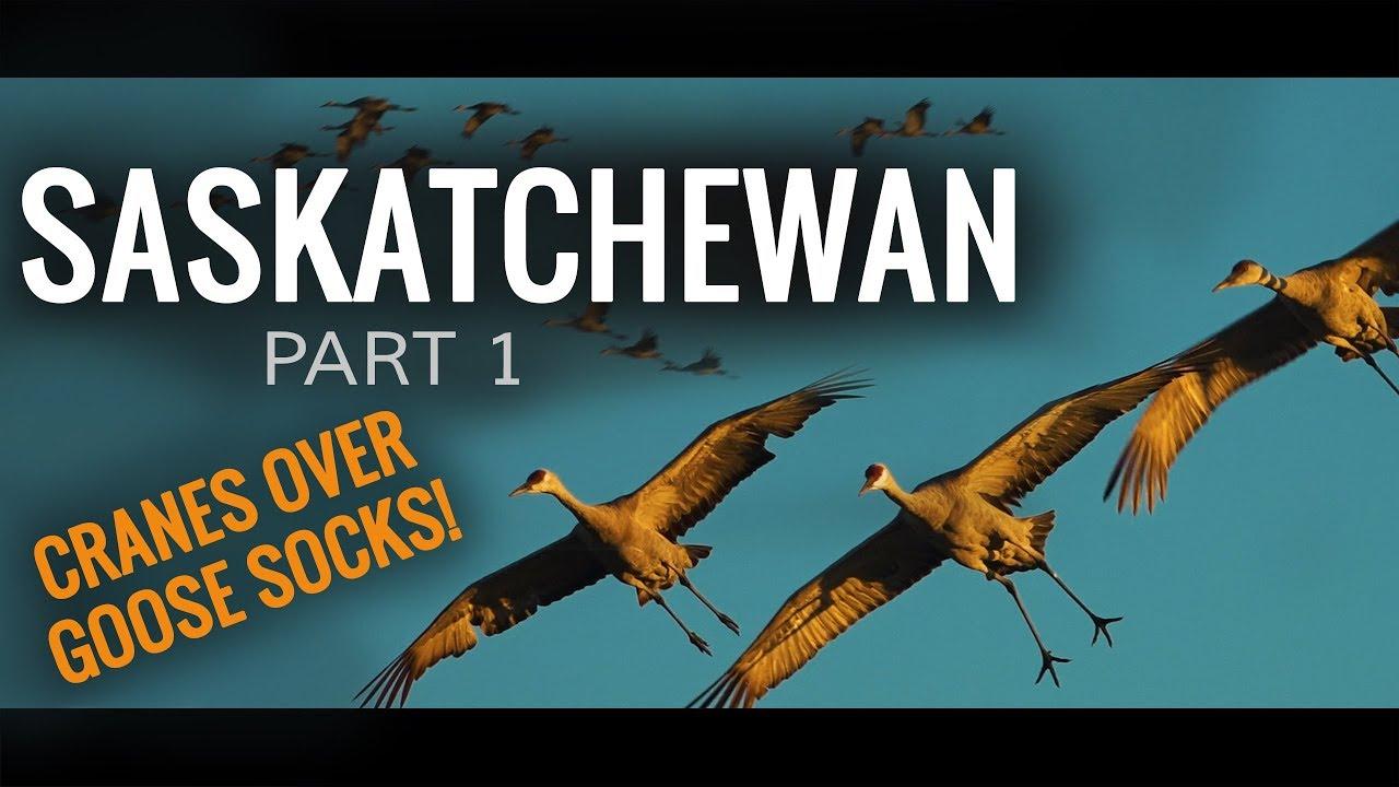 Download Crane Hunt Over Goose Windsocks | Saskatchewan: Part 1