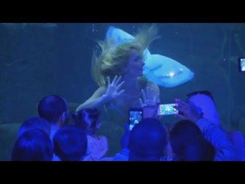 Русалка заманивает посетителей в парижский аквариум (новости) Http://9kommentariev.ru/