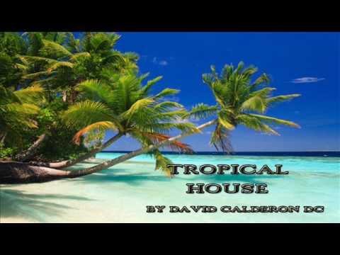 Tropical House 2017 ( Instrumental ) 100 BPM ( Pop dance house beat ) Prod   by David Calderón DC