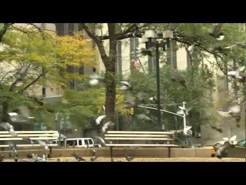 """Short Documentary """"Forgotten New York, Canal Street"""" v2.0"""