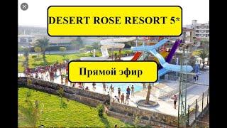 DESERT ROSE RESORT 5 Египет в условиях карантина 2020