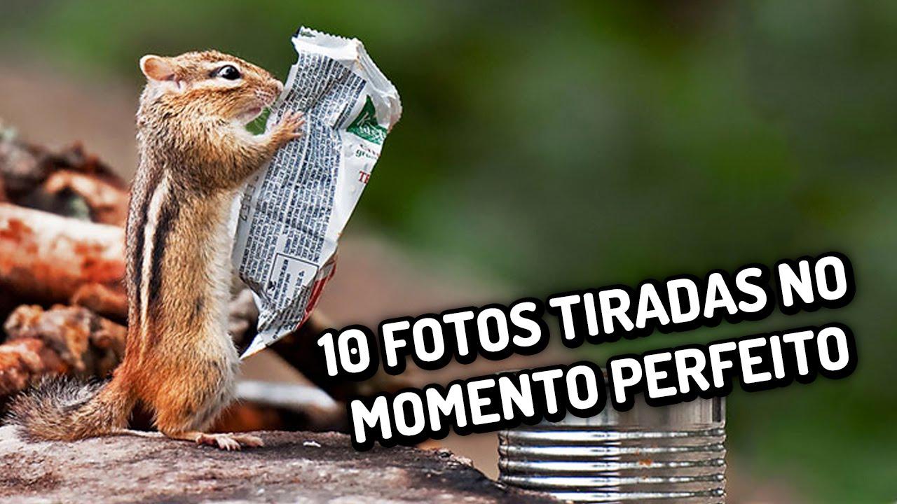 10 fotos tiradas no momento perfeito