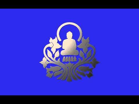 0103n1a1 The Steadiness of Your Gaze \ \ Thanissaro Bhikkhu \ \ Dhamma Talks