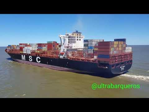 Container Ships NORDAMELIA, MSC GIULIA & MSC HANNAH/ Bulk Carrier Ships BERGE HALLASAN & CMB CATRINE