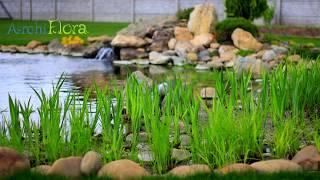 БиоПруд и БиоБассейн, что же это такое? Природный бассейн с биоплато.(Технология биоочистки прудов и бассейнов Заказать строительство биопруда или биобассейна: http://archiflora.com.ua/str..., 2016-04-27T07:56:01.000Z)