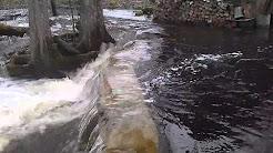 Stream dam overflows after winter