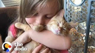 Little Girls Have The Most Special Relationship With Cats   The Dodo