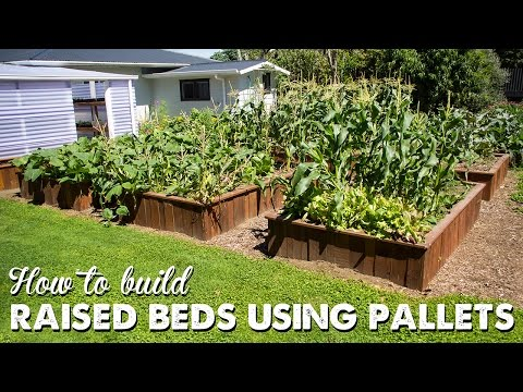 How To Build Raised Beds Using Pallets | A Thousand Words