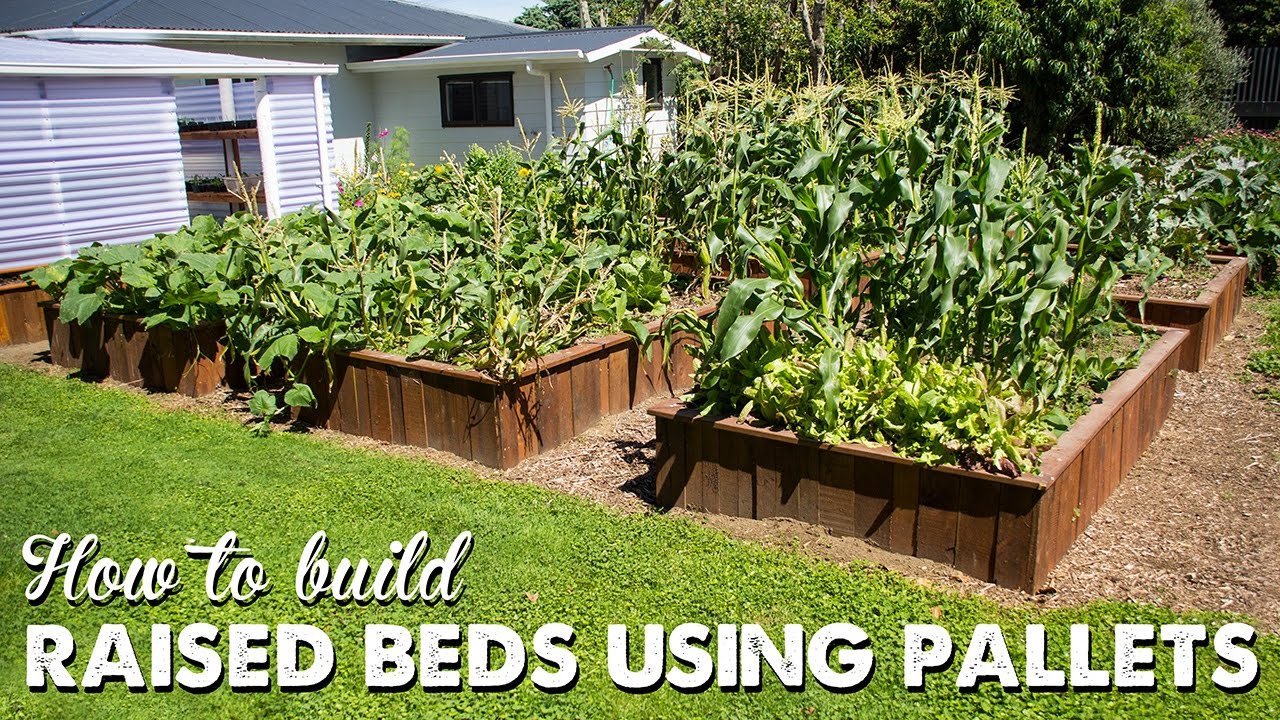 Marvelous How To Build Raised Beds Using Pallets | A Thousand Words