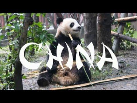 China 2018 Family Trip Video - Shanghai, Beijing, Xi'an, Chengdu, Yangshuo, Hong Kong, Disney!