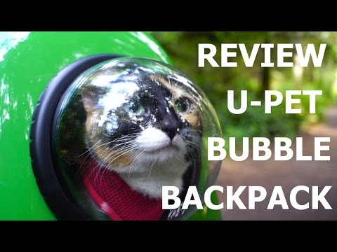 [Review] UPET Bubble Window Backpack!