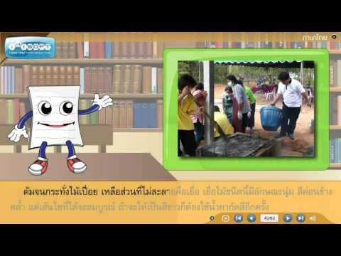 บทเรียนสอนวิชาภาษาไทย ป.4 - บทอ่านในใจเรื่องกระดาษนี้มีที่มา