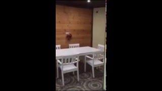 Продам или сдам в аренду элитный дом в Краснодаре(Продам 2-этажный коттедж 350 кв. м. (кирпич) на участке 7 сот., в черте города, Красная Площадь. Это были дачи...., 2016-02-22T12:32:18.000Z)