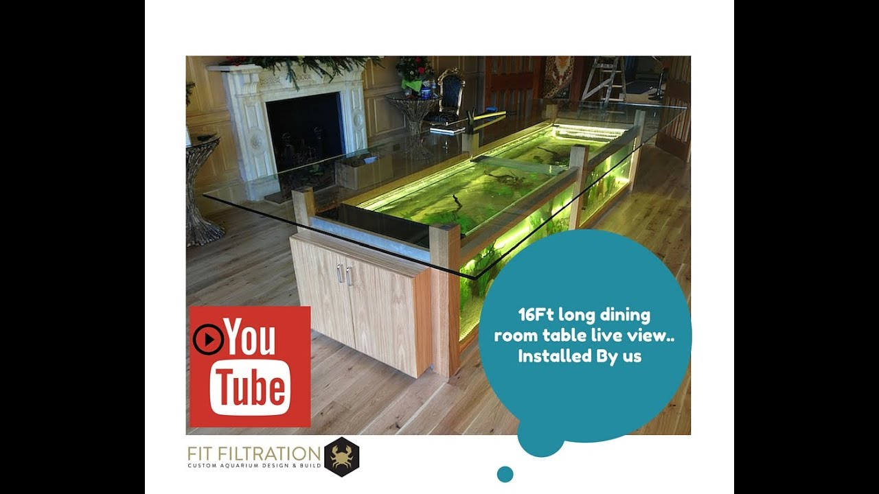 Dining room table aquarium youtube - Fish tank dining room table ...