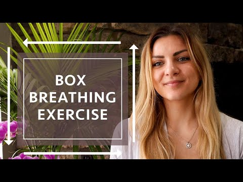 Box Breathing Exercise | Sama Vritti Pranayama