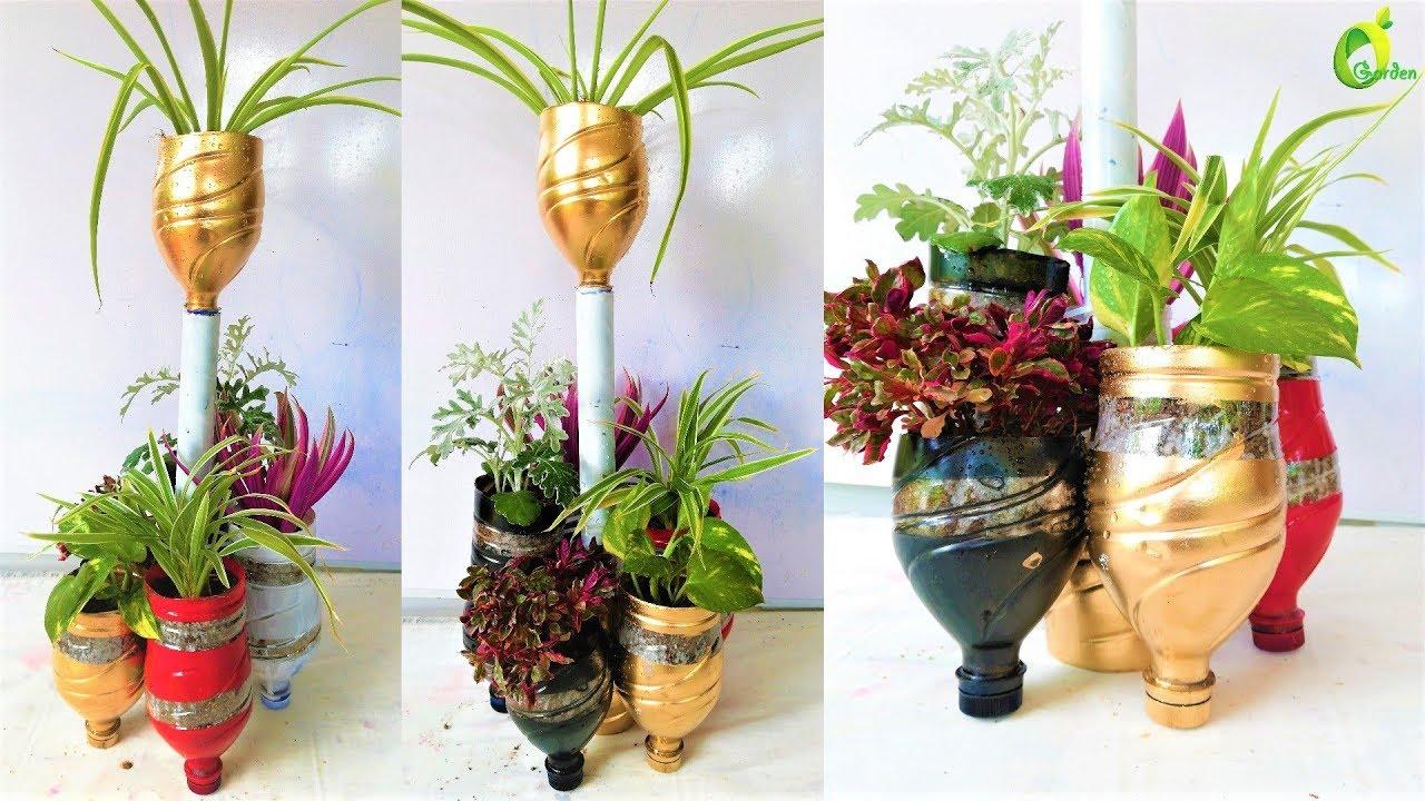 Plants in plastic bottle