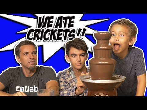 Eating Bugs?!! Chocolate Fountain Challenge | Josh Darnit