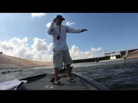 Texas Fishing, Lake Houston Dam