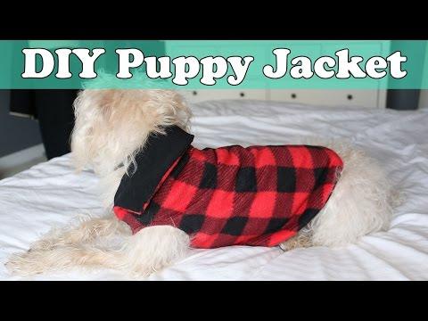 quick-and-easy-diy-puppy-jacket-/-coat
