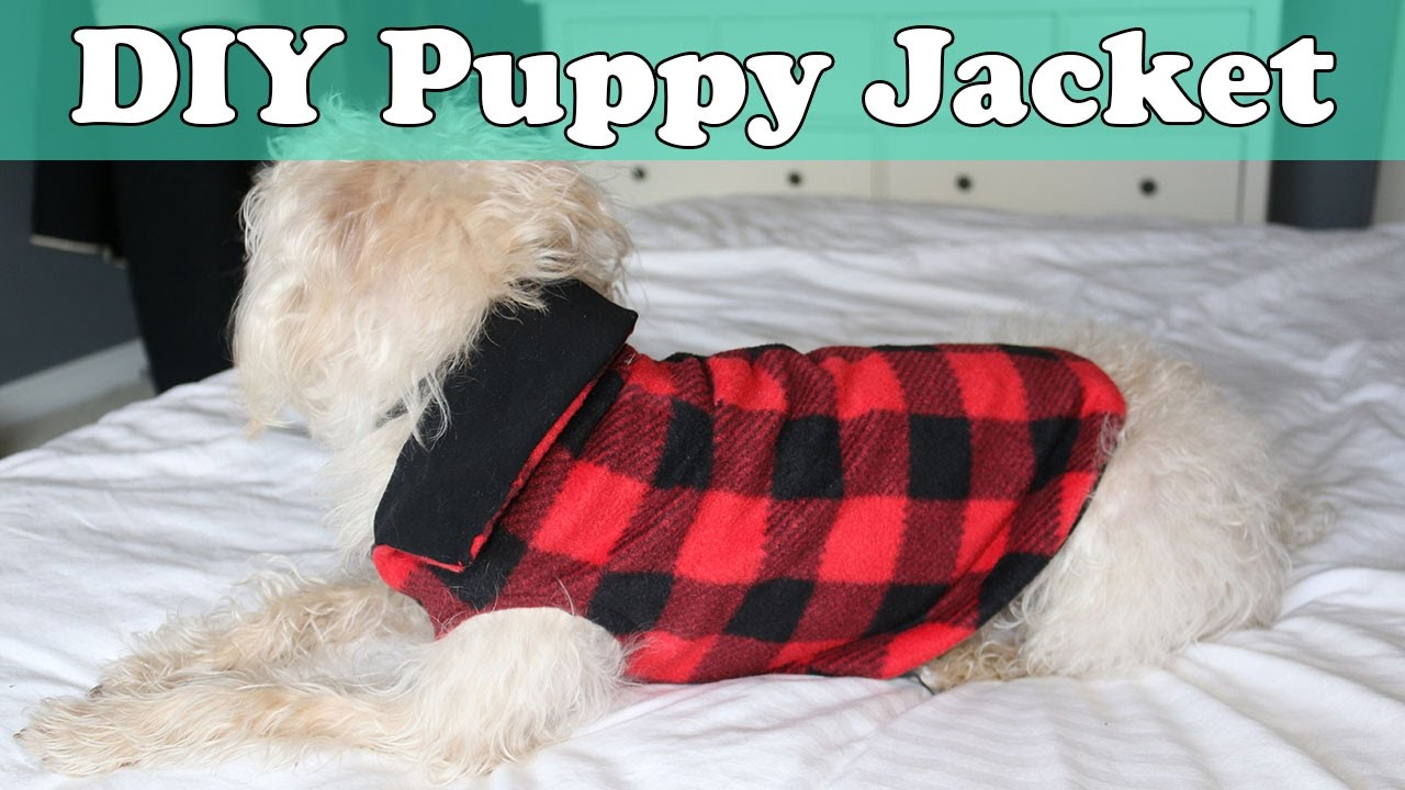 Quick And Easy Diy Puppy Jacket Coat Youtube
