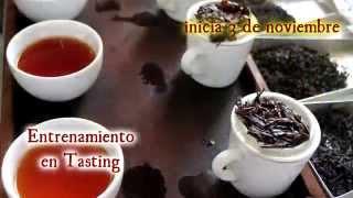 Tea Training en Sri Lanka dictado por la Escuela Argentina de Té: