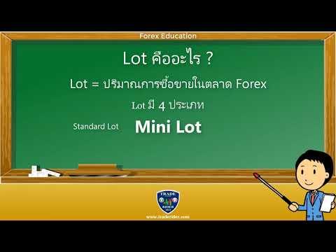 Lot คือ อะไร ในการเทรด Forex