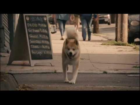 【海外スレッド】HACHI 約束の犬って映画を観たんだけど… : 京ネタ