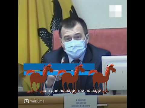 Видео Ярославль: депутаты учат собирать валежник