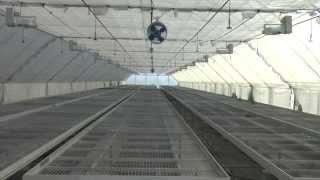 Работа система туманообразования(Как работает система туманообразования на основе туманообразователей FOG производства Tavlit., 2015-02-11T12:59:53.000Z)