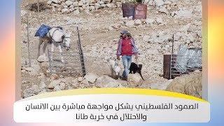 الصمود الفلسطيني يشكل مواجهة مباشرة بين الانسان والاحتلال في خربة طانا