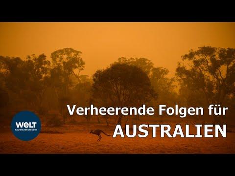 BUSCHBRÄNDE: Verheerende Folgen Für Australien