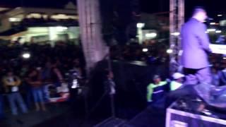 NESTOR DANIEL DE LOS TERRICOLAS