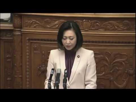 「民主党は恥を知れ!」 三原じゅん子氏 国会
