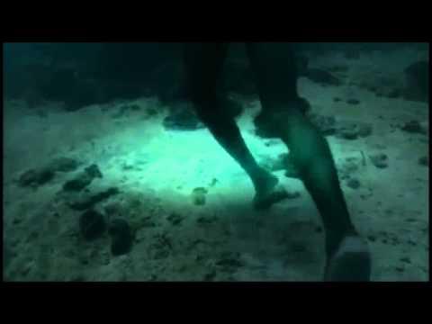 Bajaus Fisherman Under The Deep Water Ocean